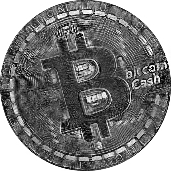 Bitcoin cash old coin